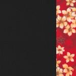 黑身油桐紅花